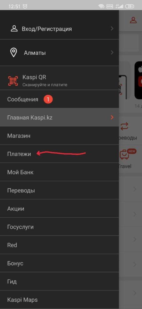 1234 472x1024 - Как оплатить домен от PS.kz через мобильное приложение каспи
