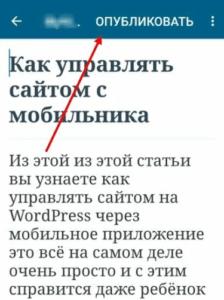 s375  4  1 224x300 1 - Мобильное приложение WordPress